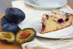 Sweet plum pie Stock Images