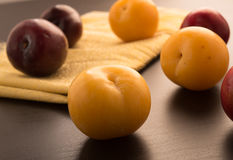 Sweet plums Stock Photos