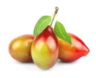 Sweet plums Royalty Free Stock Photos