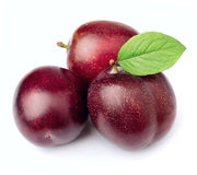 Sweet plums Royalty Free Stock Image