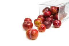Sweet plums in glass jar Stock Photos