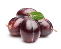Sweet plums with leaf Stock Image
