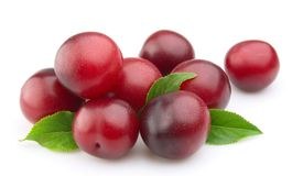 Sweet plums with leafs Royalty Free Stock Photography