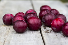 Sweet plums Royalty Free Stock Images
