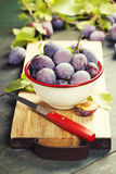 Sweet plums on wooden background. Bio healthy fruits. Selective focus. Copy space background Stock Photos