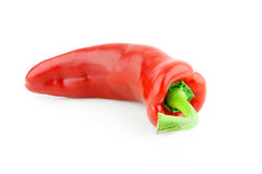 Sweet pointy pepper. A single red sweet pointy pepper(capsicum) on a white background stock image