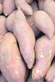 Sweet potato. The close-up of sweet potato royalty free stock photography