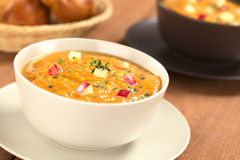 Sweet Potato and Apple Soup Royalty Free Stock Images