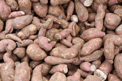 Sweet Potato Background Royalty Free Stock Photos