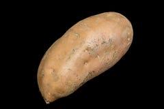 Sweet Potato on Black Background Stock Photography