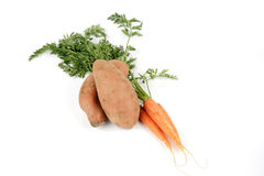 Sweet Potato and Carrots royalty free stock image