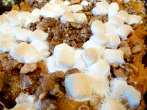 Sweet Potato Casserole Marshmallows. Sweet Potato Casserole dessert with  Marshmallows Royalty Free Stock Photo