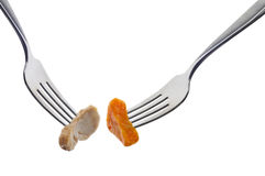 Sweet Potato and Chicken on  Forks Stock Photography