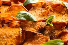 Sweet potato chips with basil as background. Closeup stock image