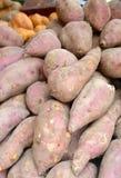 Sweet potato closeup for sale Stock Images