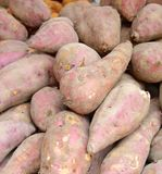 Sweet potato closeup for sale Royalty Free Stock Photography