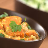 Sweet Potato Curry with Cilantro Stock Image