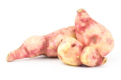 Sweet potato. Fresh sweet potato on white background Royalty Free Stock Photography