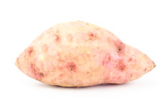 Sweet potato. Fresh sweet potato on white background Stock Image