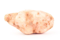 Sweet potato. Fresh sweet potato on white background Royalty Free Stock Images