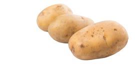 Sweet Potato III Stock Images