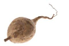 Sweet Potato Isolated stock images