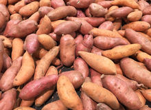 Sweet potato or Kumara background Royalty Free Stock Images