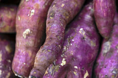Sweet potato in market stall display Stock Images