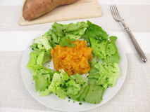 Sweet potato mash and salad Stock Images