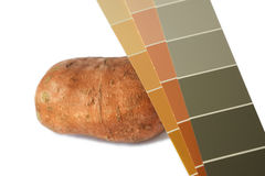 Sweet potato and orange and green paint chips Royalty Free Stock Image