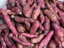 Sweet Potato Stock Photos