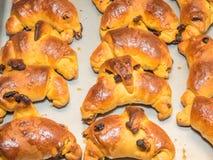 Sweet potato rolls Royalty Free Stock Photos