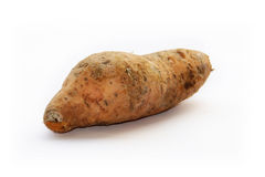 Sweet potato. Sweet potato on the white background Stock Images