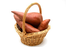 Sweet potato on the white background. Used in cooking Royalty Free Stock Photo