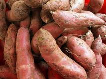 Sweet potatoes. Raw sweet potatoes sold in the market Stock Image