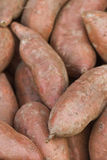 Sweet Potatoes Close Up Stock Images