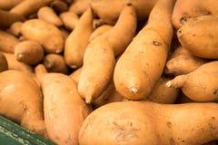 Sweet Potatoes. Closeup of sweet potatoes at an outdoor vegetable market in San Francisco Royalty Free Stock Image