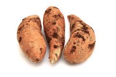 Sweet potatoes with earth. Trio of sweet potatoes fresh from the ground Stock Photo