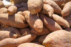 Sweet potatoes Royalty Free Stock Photos