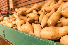 Sweet Potatoes. A green wooden bin filled with sweet potatoes at an outdoor vegetable market in San Francisco Royalty Free Stock Photos