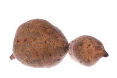 Sweet Potatoes Isolated Royalty Free Stock Photos
