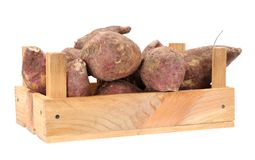 Sweet potatoes Stock Image