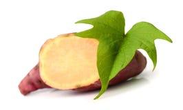 Sweet potatoes. Sweet potato on the white background Royalty Free Stock Photo