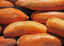 Sweet Potatoes for Sale at the Market Stock Image