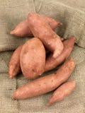 Sweet Potatos Stock Images