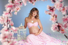 Sweet pregnancy Royalty Free Stock Images