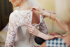 Sweet pretty bride wears a stylish wedding dress on a background Stock Photos