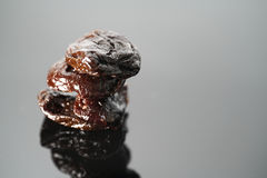 Sweet Prunes Stock Photography