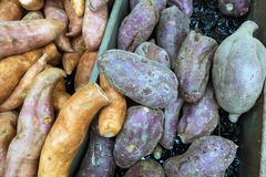 Sweet Ptatoes Royalty Free Stock Image