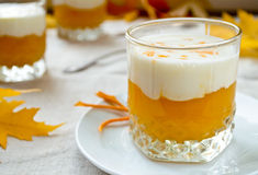 Sweet pumpkin cream smoothies and thick greek yougurt Stock Photography